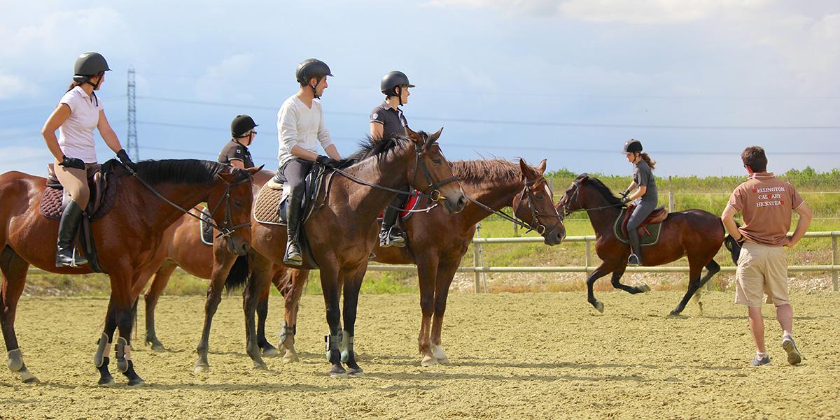 centre equestre azay le rideau
